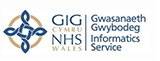 Welsh Informatics Service